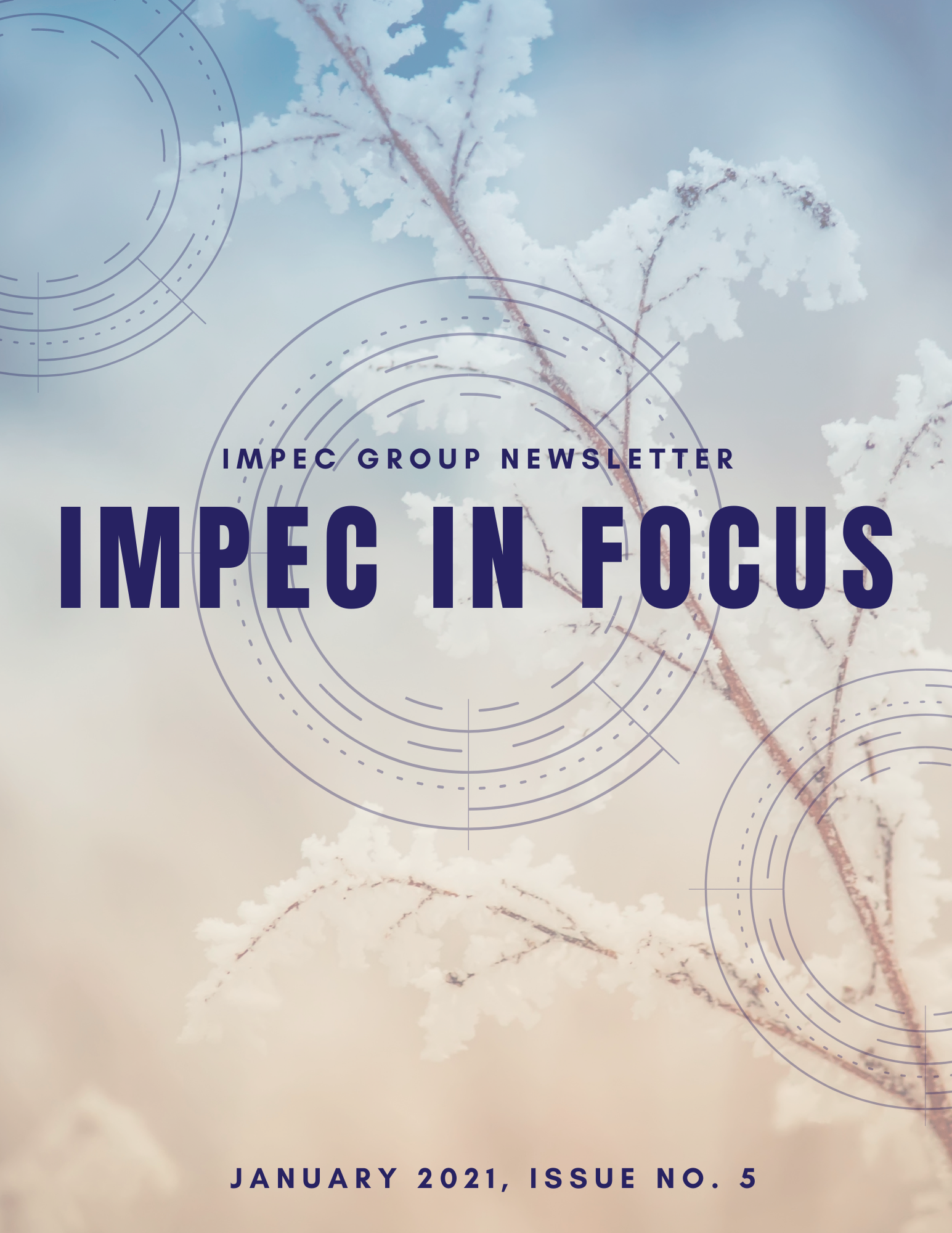 Impec Group January 2021 Newsletter